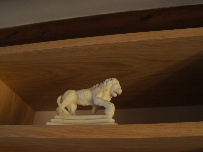 lion in the library